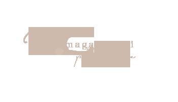 Magali Tinti  photographe professionnelle spécialiste  bébé,  nouveau-ne, femme enceinte,  Mariages, studio et extérieur Paris, Seine et Marne logo